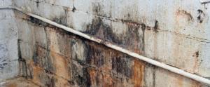 lekkage sporen in kelder